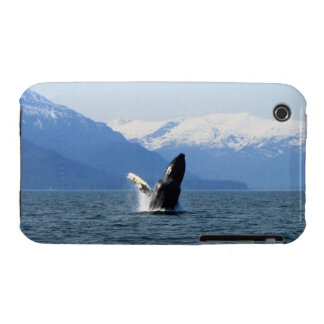 Humpback on the Surface iPhone 3 Case