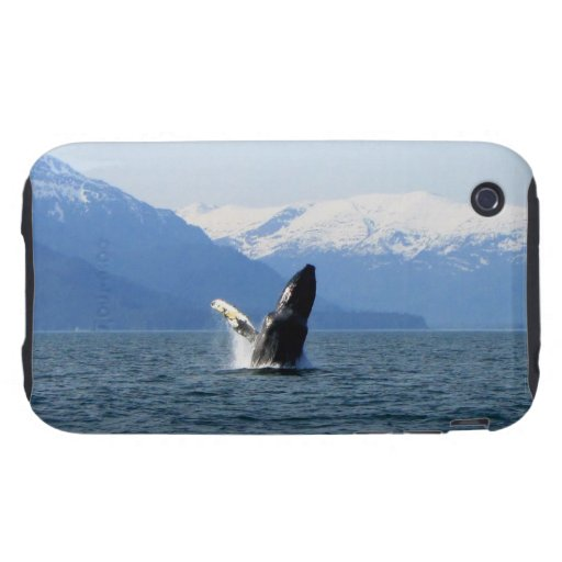 Humpback on the Surface iPhone 3 Tough Covers