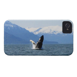 Humpback on the Surface iPhone 4 Case
