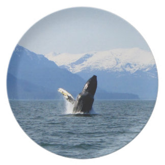 Humpback on the Surface Melamine Plate