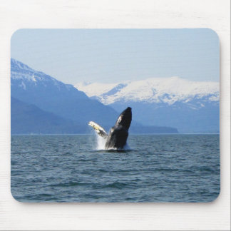 Humpback on the Surface Mouse Pad