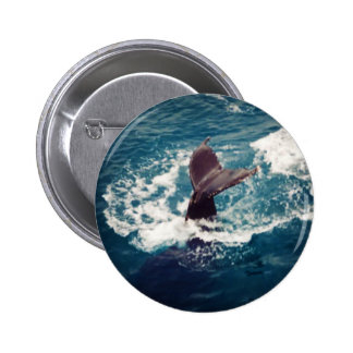 Humpback Tail, button