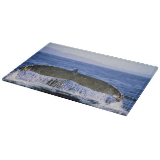 Humpback tail. cutting board
