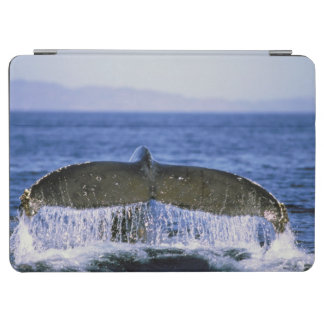 Humpback tail. iPad air cover