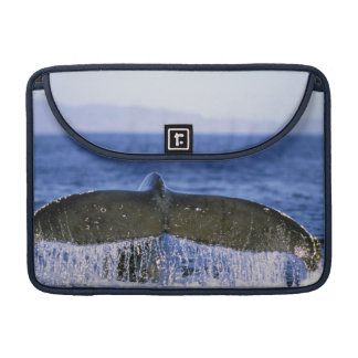 Humpback tail. MacBook pro sleeve