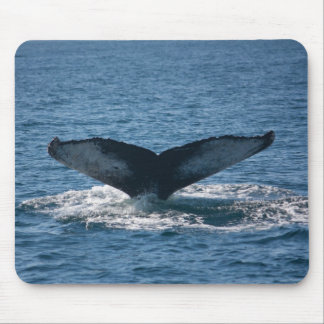 Humpback Tail Mouse Pads