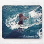 Humpback Tail, mousepad