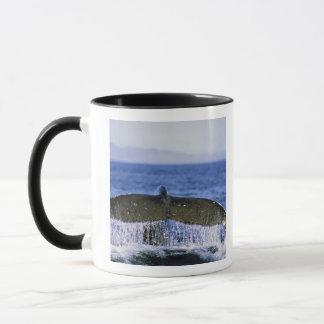 Humpback tail. mug