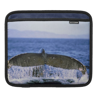 Humpback tail. sleeve for iPads