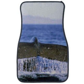 Humpback tail floor mat