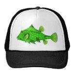 Humpback Turretfish Green Hat