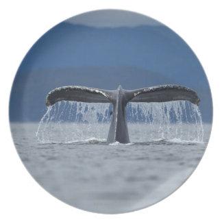 Humpback Whale 2 Plates