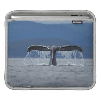Humpback Whale 2 Sleeve For iPads
