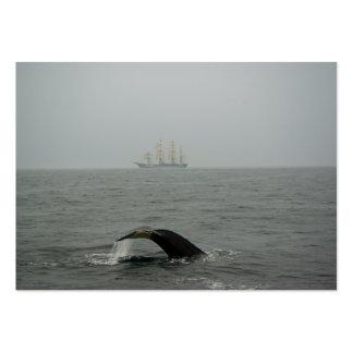 Humpback Whale and Tall Ship 2 Mini Print Large Business Card