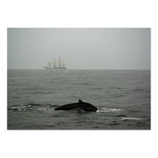 Humpback Whale and Tall Ship Mini Print Large Business Card