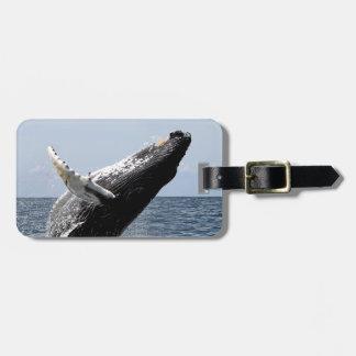 Humpback whale bag tag