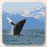 Humpback Whale Breaching Beverage Coasters