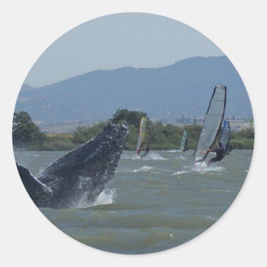 Humpback Whale Breaching by Windsurfers Classic Round Sticker
