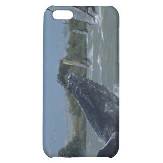 Humpback Whale Breaching by Windsurfers iPhone 5C Covers