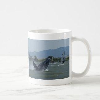 Humpback Whale Breaching by Windsurfers Classic White Coffee Mug