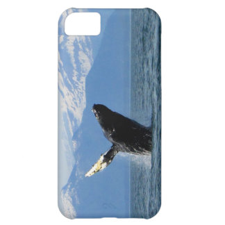 Humpback Whale Breaching iPhone 5C Cases