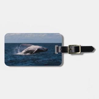 Humpback Whale Breaching Luggage Tag