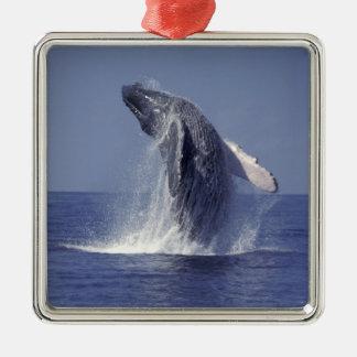 Humpback whale breaching (Megaptera Metal Ornament