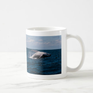 Humpback Whale Breaching Surfers Paradise Coffee Mug