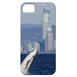 Humpback Whale Calf Breaching Surfers Paradise iPhone SE/5/5s Case