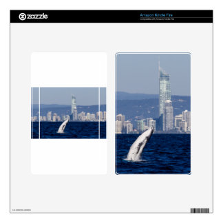Humpback Whale Calf Breaching Surfers Paradise Kindle Fire Skin