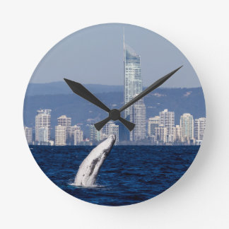 Humpback Whale Calf Breaching Surfers Paradise Round Clock