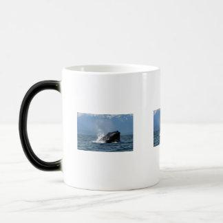 Humpback Whale Feeding Magic Mug