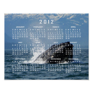 Humpback Whale Feeding Poster