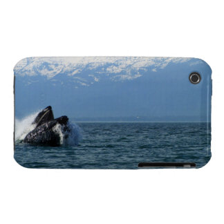 Humpback Whale Head iPhone 3 Case-Mate Cases