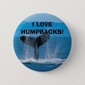 Humpback Whale, I LOVE HUMPBACKS! Button