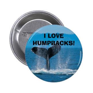 Humpback Whale, I LOVE HUMPBACKS! Pinback Buttons