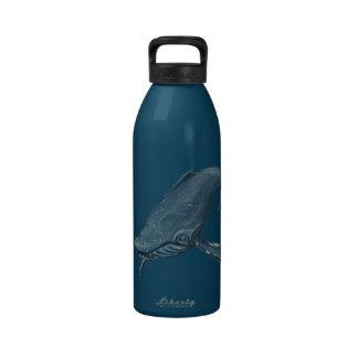 Humpback Whale Illustration Water Bottle