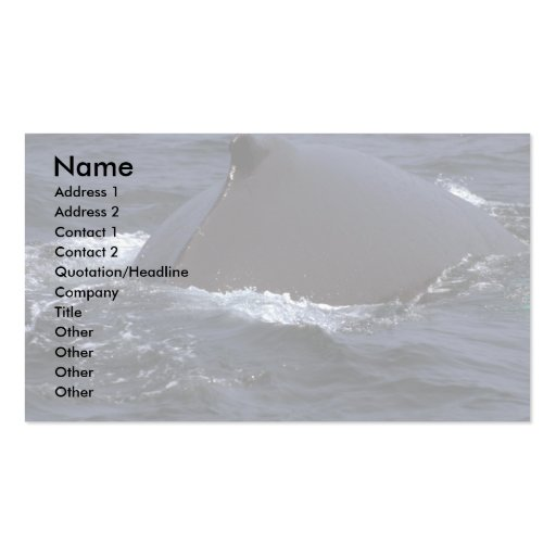 Humpback Whale In Fog Business Cards