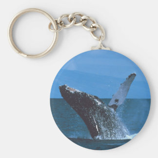 Humpback whale Jumping Basic Round Button Keychain