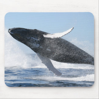 Humpback Whale Jumping High Mouse Pad