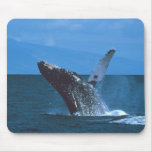 Humpback whale Jumping Mousepads