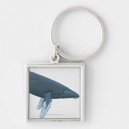 Humpback Whale Key Chain