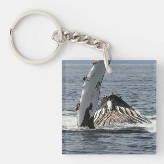 Humpback Whale Single-Sided Square Acrylic Keychain