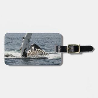 Humpback Whale Luggage Tags