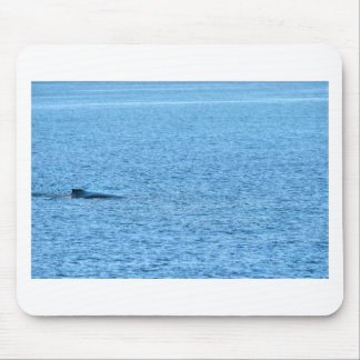 HUMPBACK WHALE MACKAY QUEENSLAND AUSTRALIA MOUSE PAD