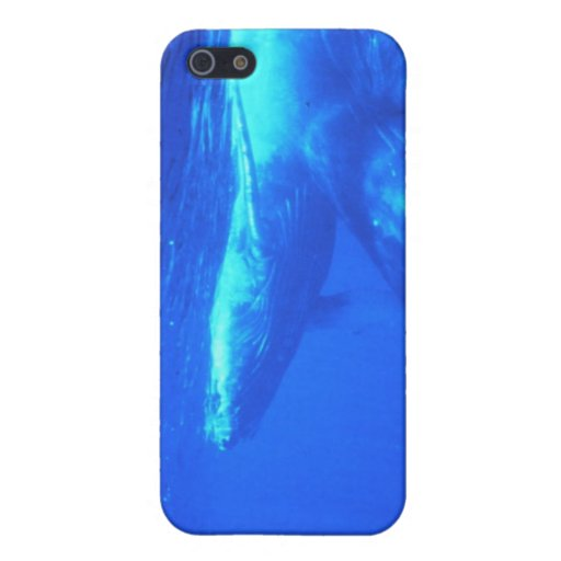 Humpback Whale Mother and Calf iPhone 5 Cover