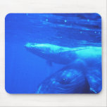 Humpback Whale Mother and Calf Mousepad