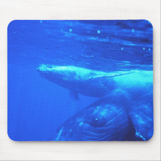 Humpback Whale Mother and Calf Mouse Pad