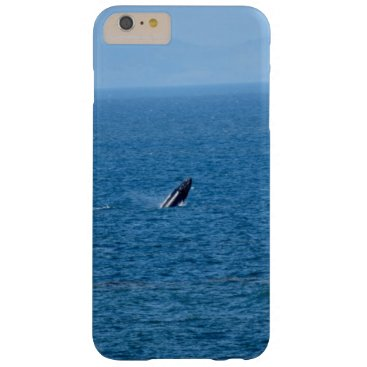 Beach Themed HUMPBACK WHALE ON MIGRATION QUEENSLAND AUTRALIA BARELY THERE iPhone 6 PLUS CASE