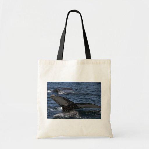 Humpback Whale Pair Budget Tote Bag